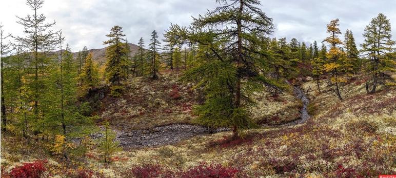 14 prirodnye zony rossii