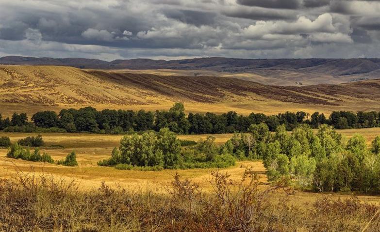 17 prirodnye zony rossii