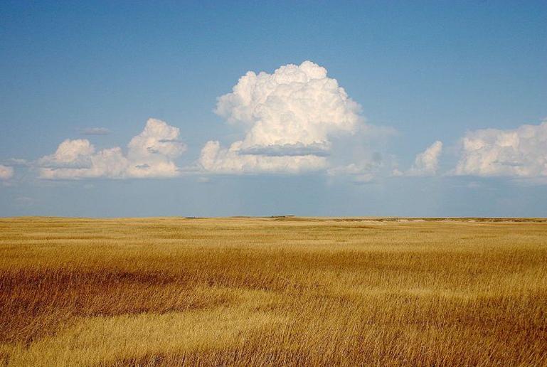19 prirodnye zony rossii