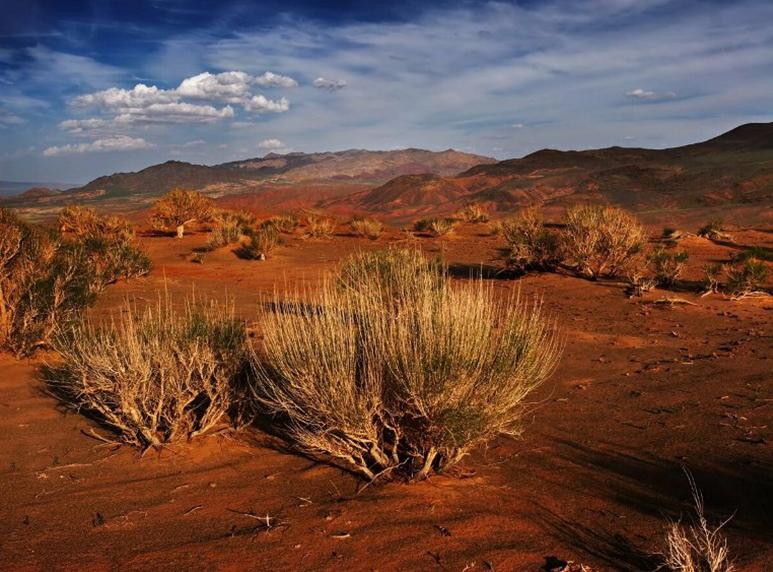 24 prirodnye zony rossii