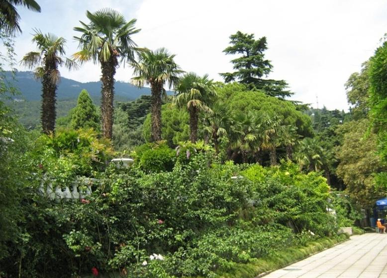 26 prirodnye zony rossii