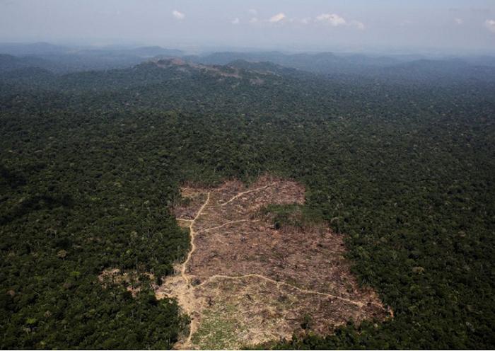 13 ekologiya zemli