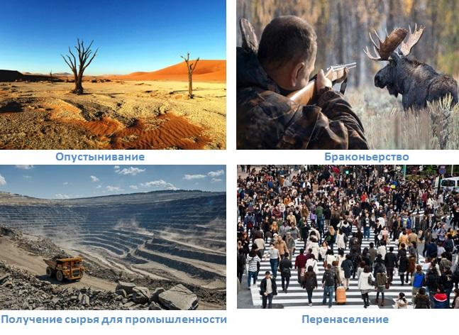9 ekologiya zemli