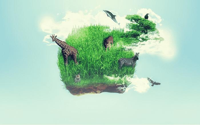 1 prirodnye bogatstva
